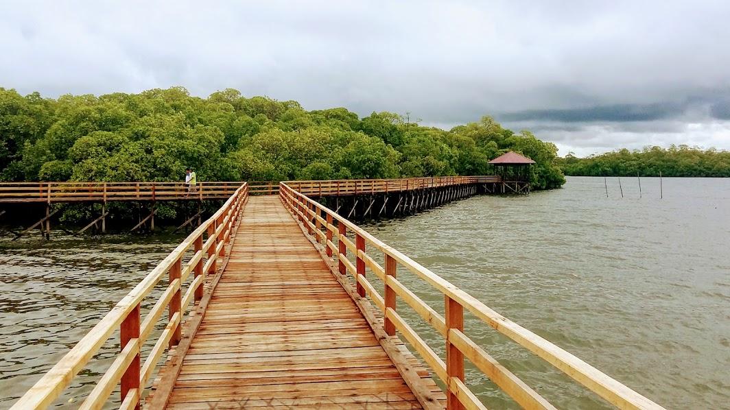 Taman Eko Pesisir Katunggan (Taman Eko Mangrove)