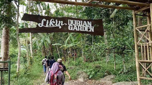 Durian Garden