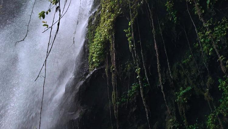 Air Terjun Siok