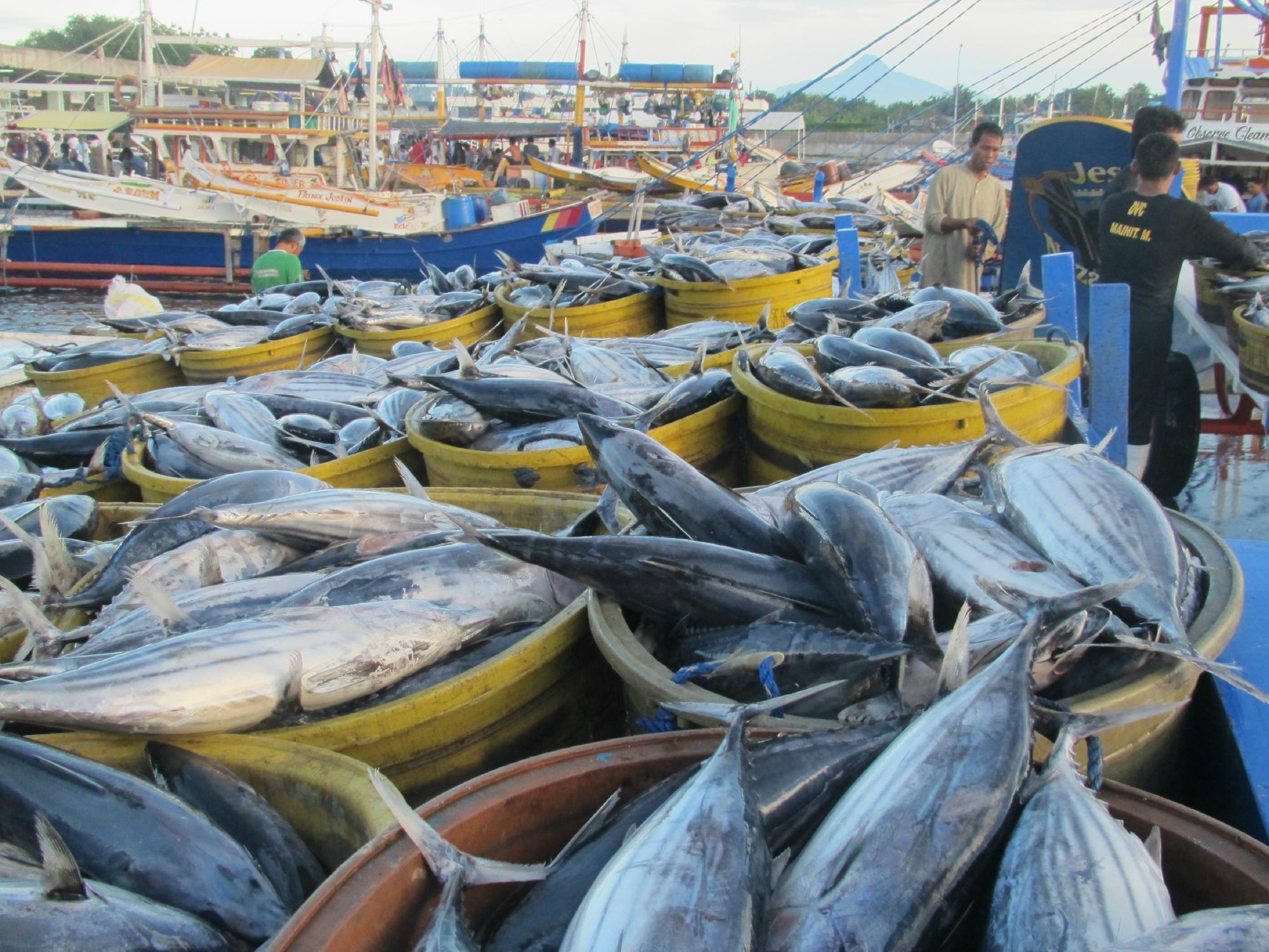 Kompleks Pelabuhan Ikan Kota General Santos