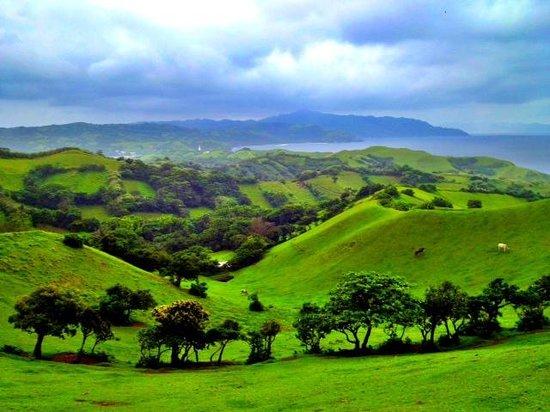 Bukit Naidi